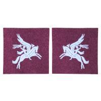 Parachute & Airborne Badges