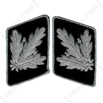SS Officer Collar Tabs