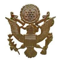 US Cap Badges