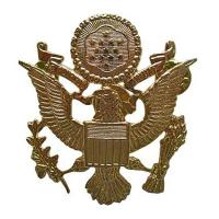US Cap Badges