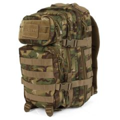 Arid Woodland Camo MOLLE Assault Pack - Regular Size
