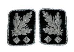 Waffen-SS Obergruppenfuhrer Collar Tabs