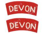 Devon Regiment