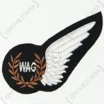 RAF WAG Wing